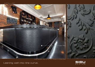 SIBU_picture_of_the_month_2012-06