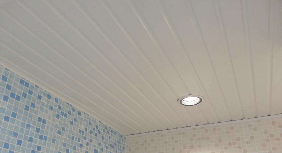 ridged-ceiling-1